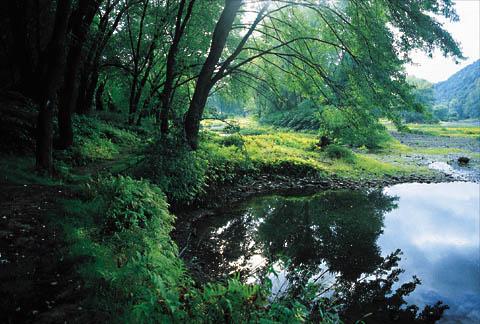 Susquehanna-River-Mormon